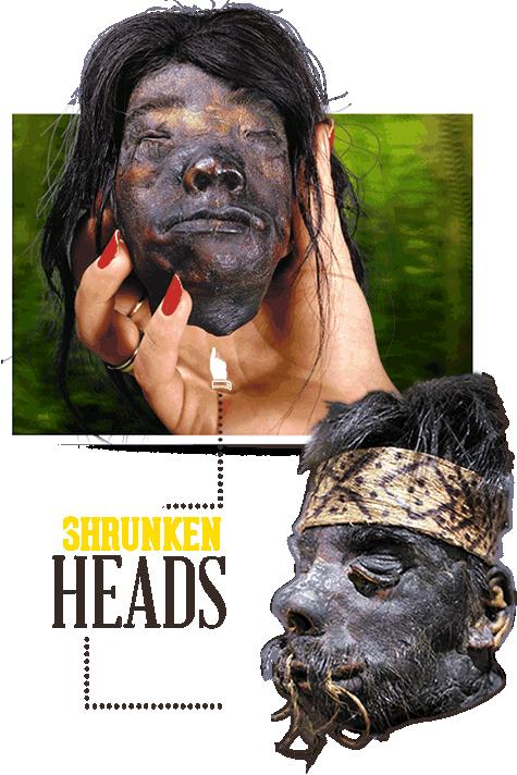 shrunkenheads-slider-home11