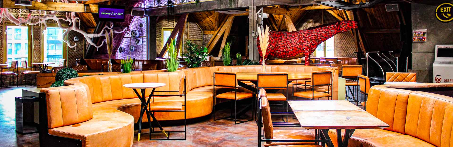 Ripley's Amsterdam Lounge