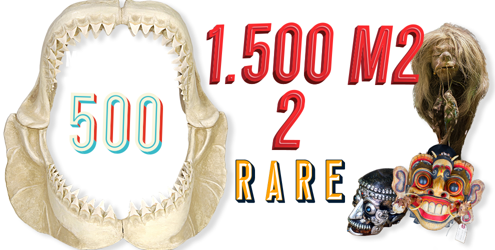 Ripley's Believe It or Not! Infographic image