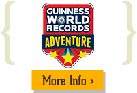 Gatlinburg Guinness World Records Adventure Info