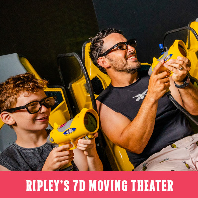 Ripley's 7D Moving Theater Image