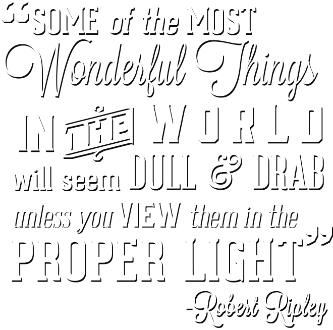 Niagara Falls Robert Ripley's View Them