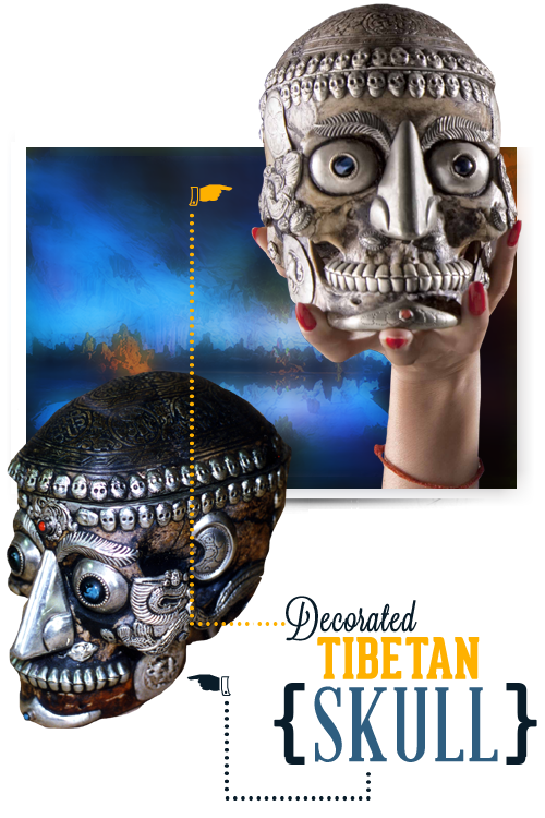 Niagara Falls Ripley's Believe It or Not Tibetan Skull