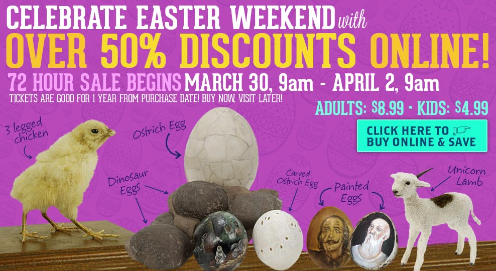 Easter Discount Ripleys Half Off