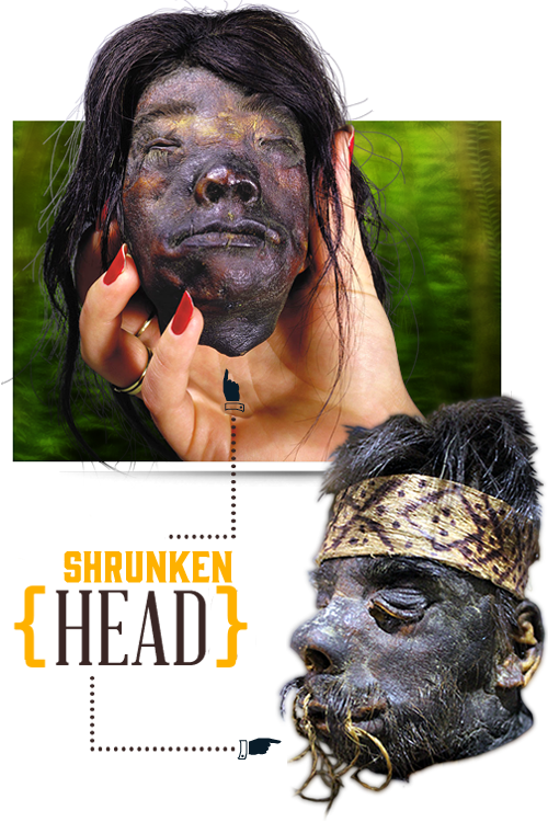 home-slider-shrunkenhead