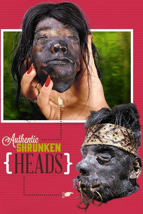 shrunkenheads-slider-home1
