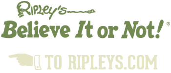 Back to Ripleys.com