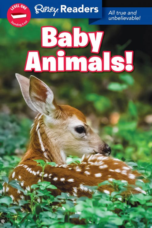 ReadersBabyAnimals