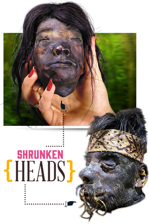 home-slider-shrunkenheads