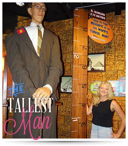 Surfers Paradise Ripley's Believe It or Not The Tallest Man