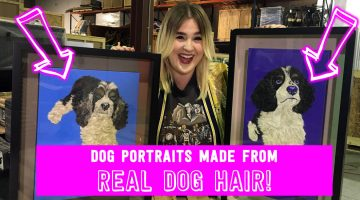 Puppy Portraits Made of Real Dog Hair!