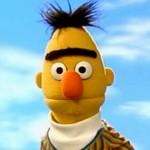 Muppet Bert