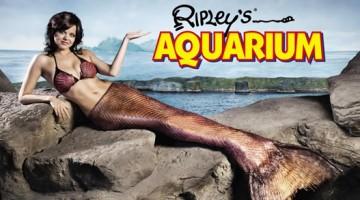 Aquarium mermaid