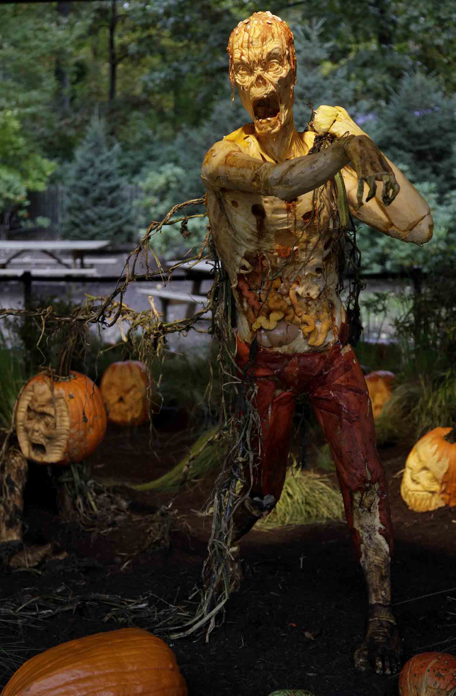 A zombie carved from giant pumpkins is displayed with other pumpkins at the New York Botanical Gardens in New York, Tuesday, Oct. 23, 2012. The pumpkins will be on display through Oct. 31, 2012. (AP Photo/Seth Wenig)