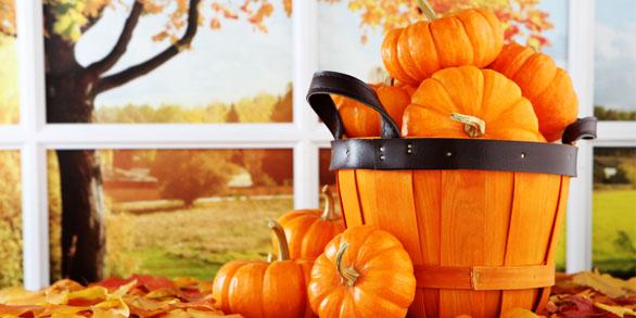 bucket of pumpkins