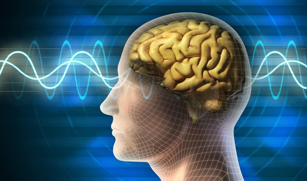 Brain stimuli