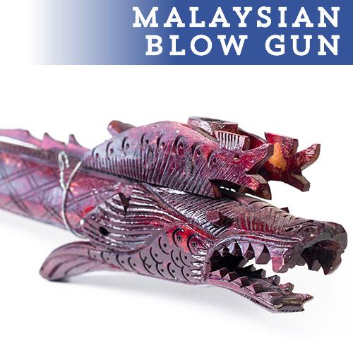 bbb-blowgun