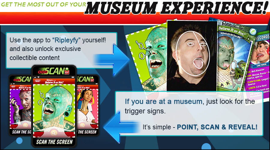 Museum experience