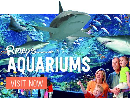 Ripleys Aquariums