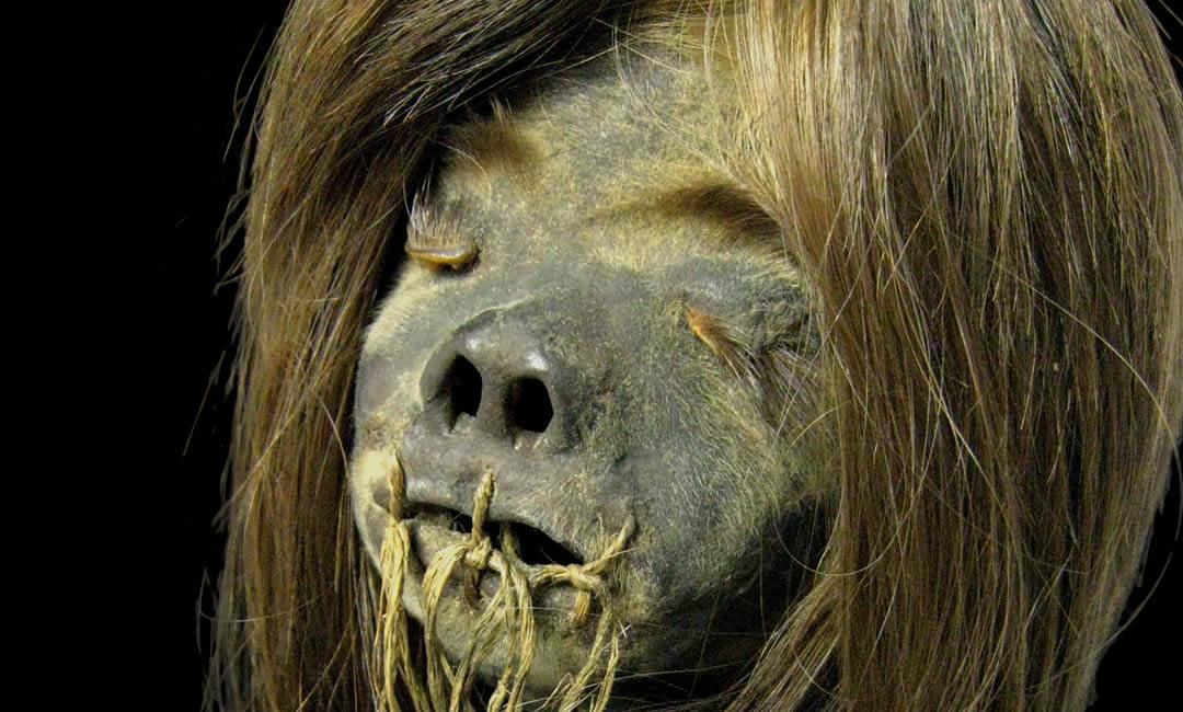 Authentic Human Shrunken Head