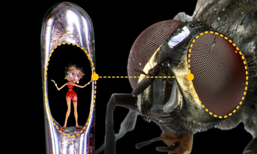 Wilard Wigan's Miniature Art inside the eye of a needle
