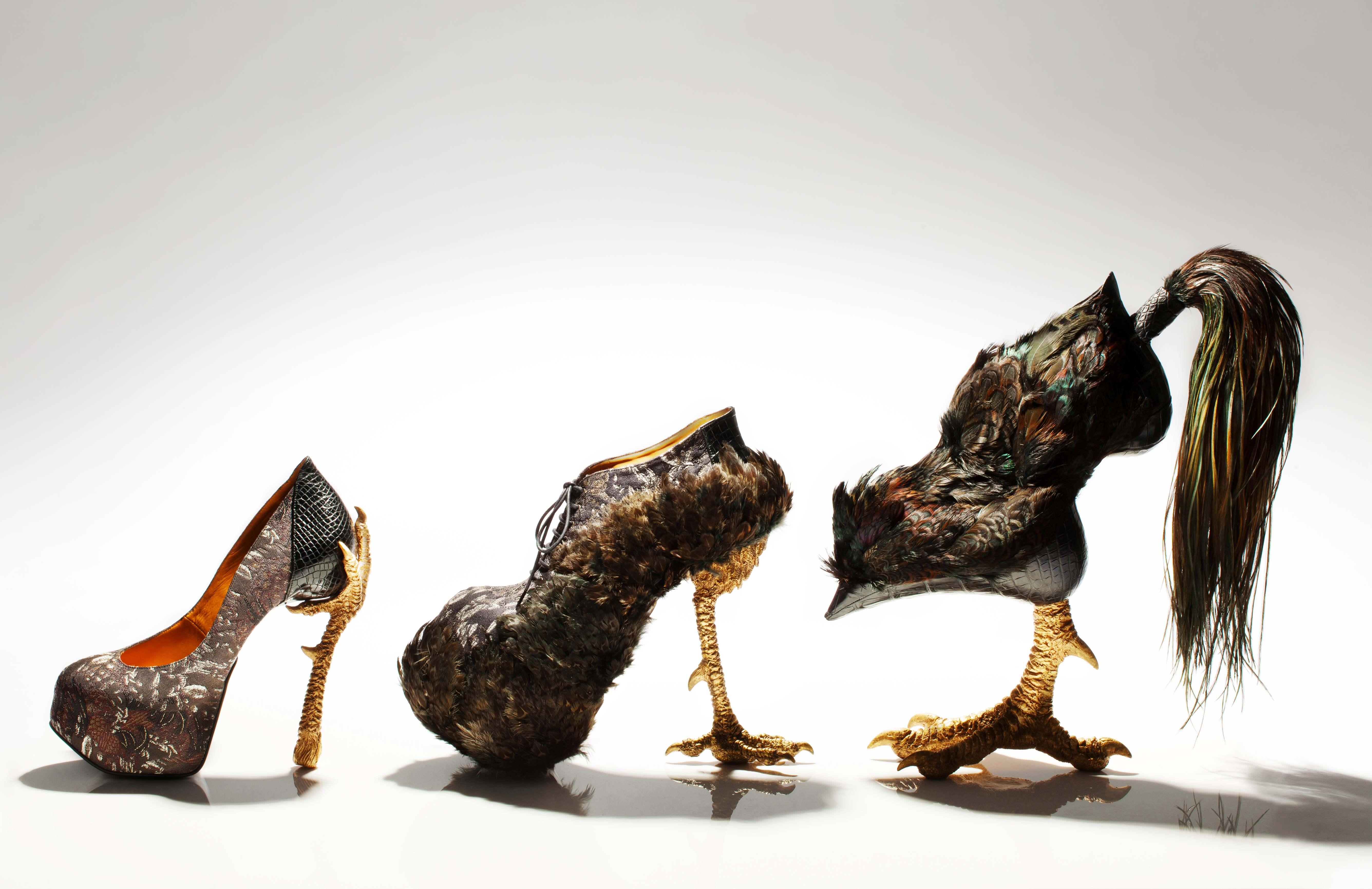 смешные картинки с обувью дизайн героиня имени