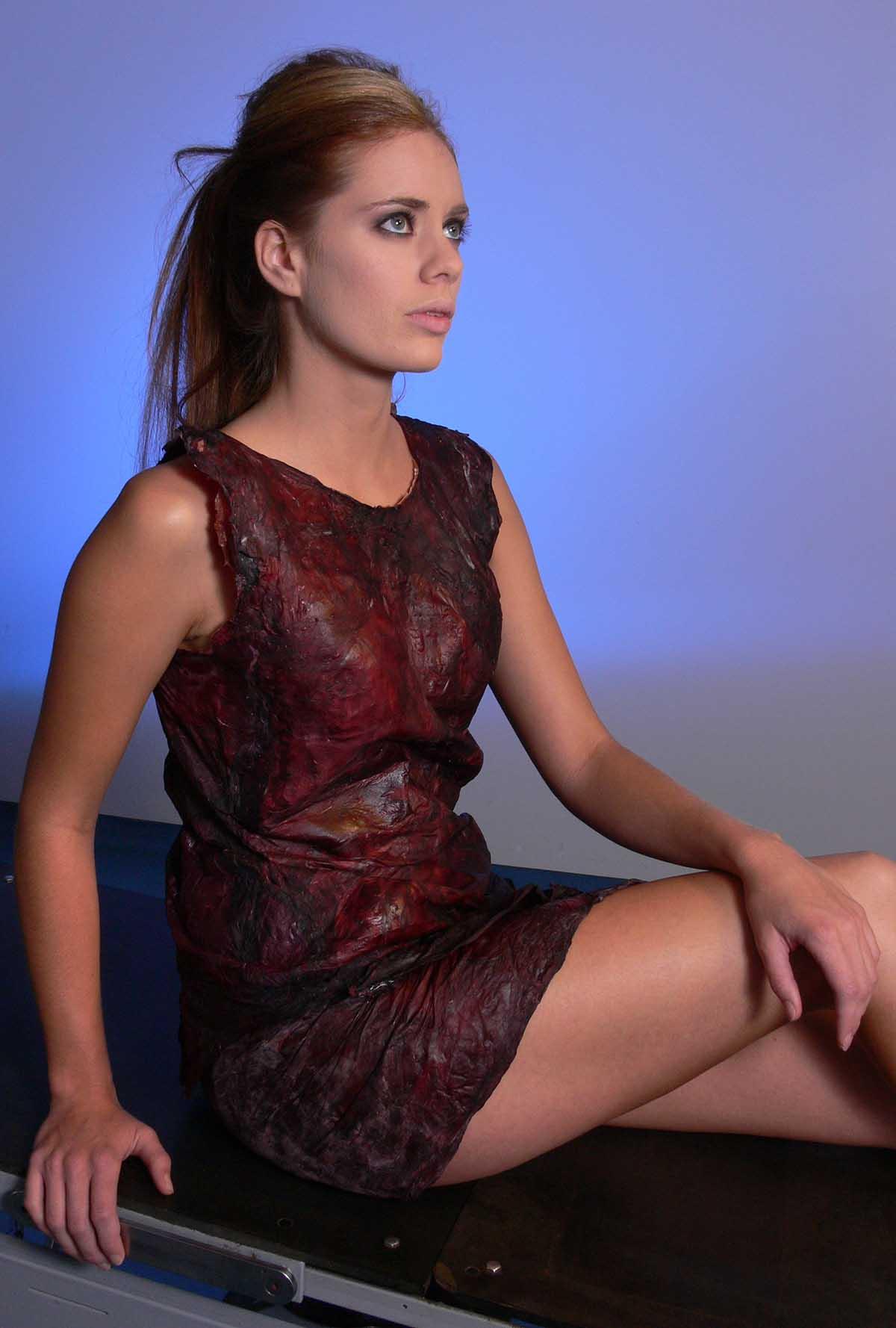 Wine Dress Model