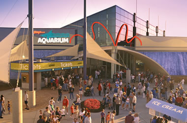 Aquariums Panama City Beach The Best Beaches In World