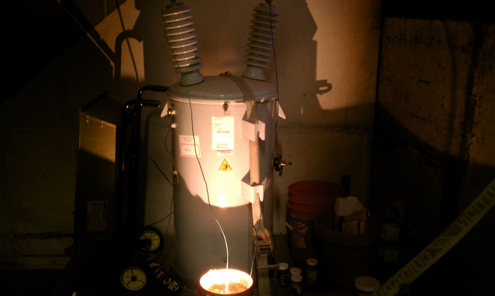 HIGH VOLTAGE: Making Petrified Lightning at Home