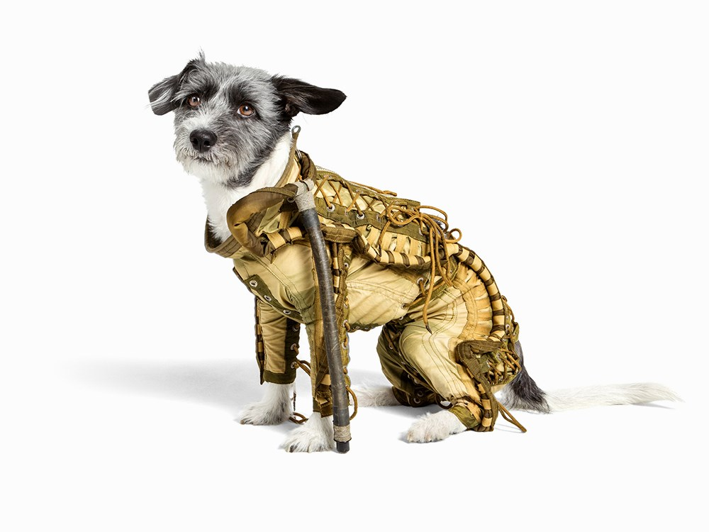 dog in space suit - photo #3