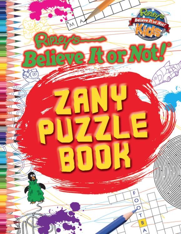 Zany Puzzle Book