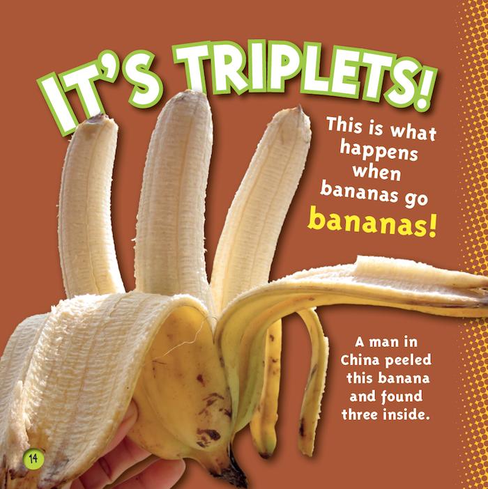 triplet banana