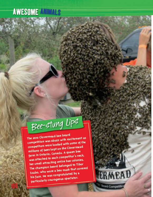 Completely Awesome! bee beard