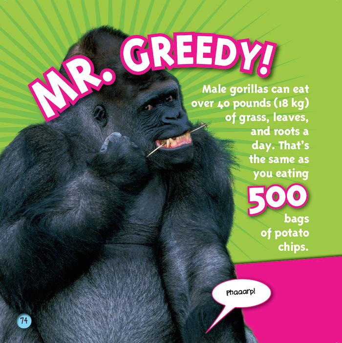 gorilla fun fact