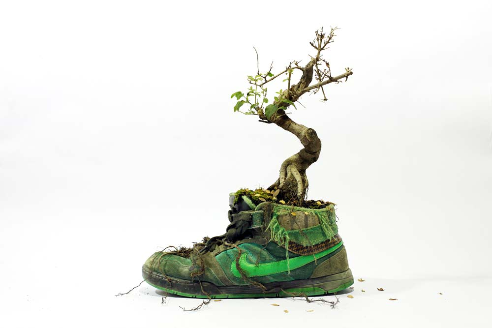 668e5a91ef41 Just Grow It  If Nature Made Shoes
