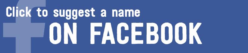 suggest-name-facebook