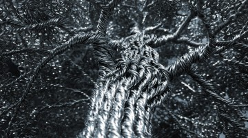 Wire-Trees-Header