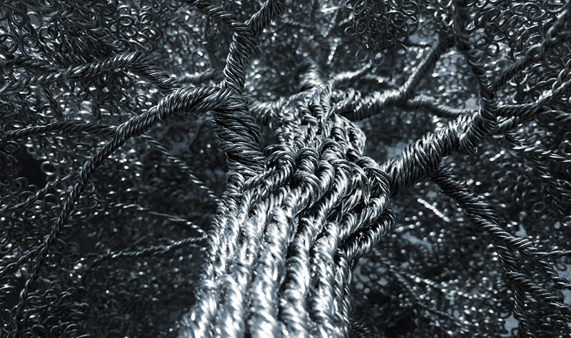 forests made of wire