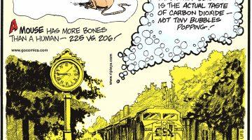 Ripley's Believe It or Not! - rp_c150320.tif