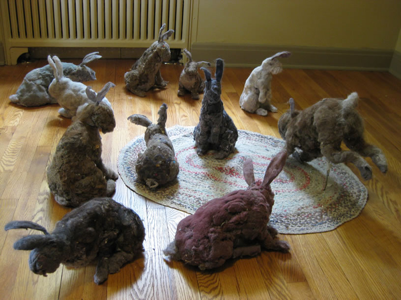 Image result for DUST BUNNIES
