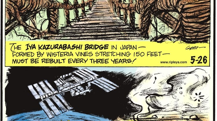 The Iya Kazurabashi Bridge in Japan-- formed by wisteria vines stretching 150 feet--must be rebuilt every three years! Costing $150 billion The International Space Station is the most expensive object ever constructed. In 2010, six employees at the Akansha Food Products plant in Lucknow, India, drowned in a six-meter vat of fermented vegetables.
