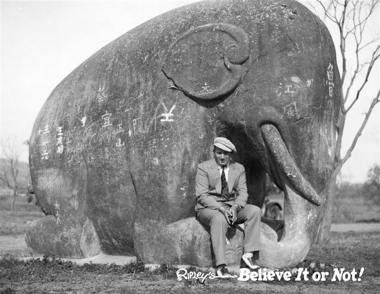 RobertRipley-elephant