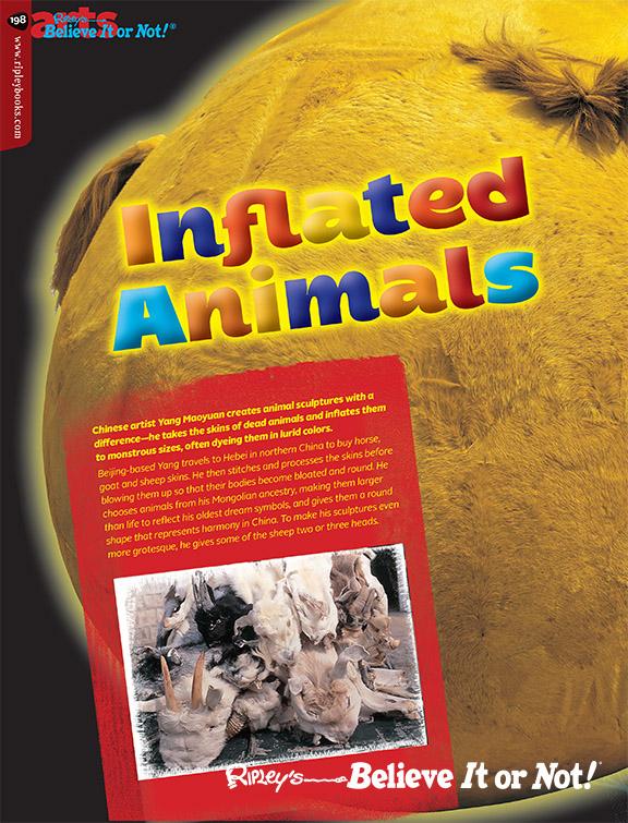 198-199_inflatedanimals_V3.indd