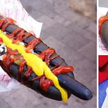 Hot-Dog-Blog-Header