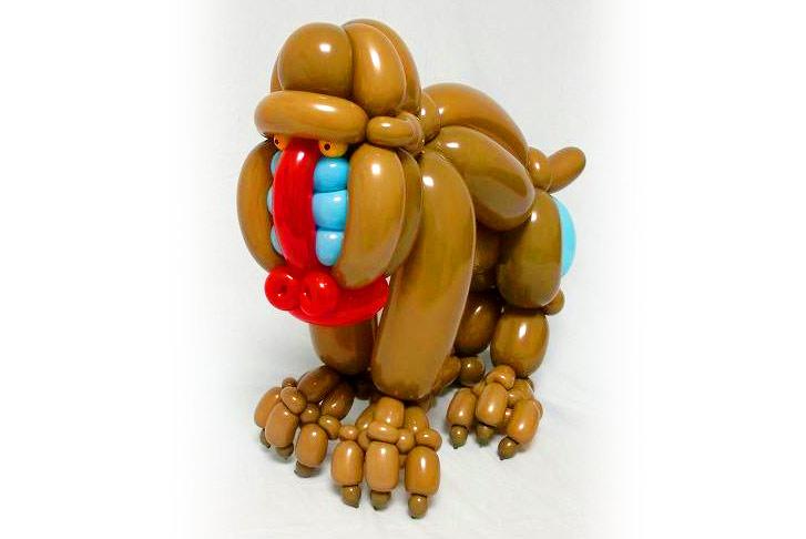 Balloon Mandrill