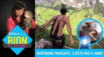 skin suspension