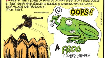 A frog caused nearly 3,000 Kissimmee Utility Authority customers to lose power on August 10, 2015 in Osceola County, FL. Homes in the village of Siala in Orissa, India, don't have doors in their entryways. Residents believe a goddess watches over their village and protects it from theft. In the Yemeni sport of camel jumping, competitors leap over rows of camels lined up side-by-side, and whoever can jump over the most wins.