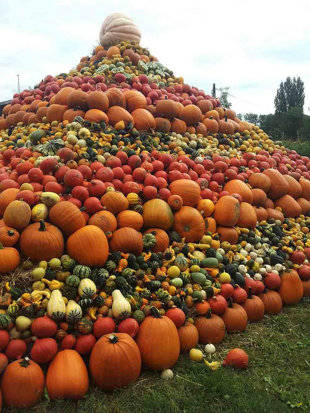 pumpkin-pyramid