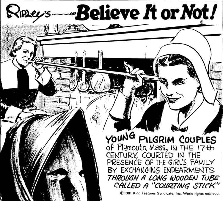 pilgrim courting tube