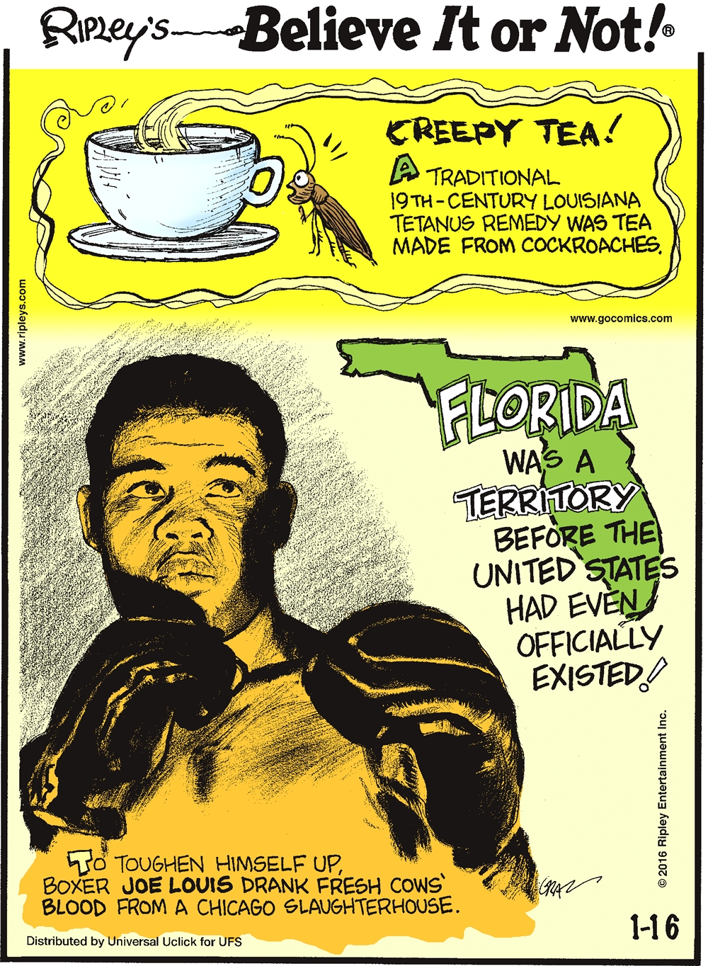 Creepy tea! A traditional 19th-century Louisiana tetanus remedy was tea made from cockroaches. -------------------- Florida was a territory before the United States had even officially existed! -------------------- To toughen himself up, boxer Joe Louis drank fresh cows' blood from a Chicago slaughterhouse.